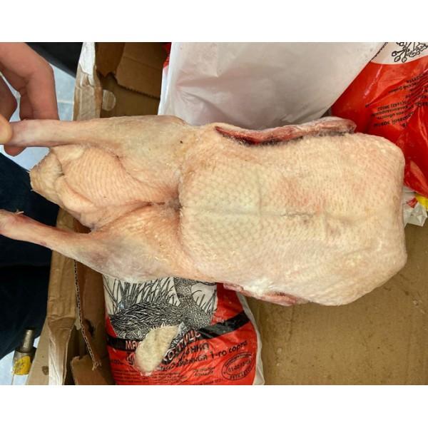 Утка (ф/п) калибр 2 кг 1/12 кг